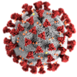 Boletim Epidemiológico – CORONAVÍRUS (COVID-19) | DENGUE 009